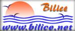 bilice.net